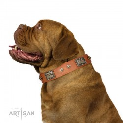 "Tan Leather Dog Collar with Plates - Vintage Style"" Handcrafted by Artisan"""