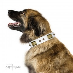 "White Leather Dog Collar with Brass Decor - Vintage Subtlety"" Handcrafted by Artisan"""