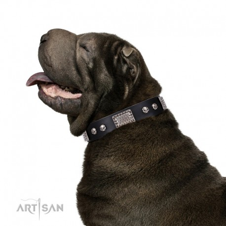 """Black Leather Dog Collar with Chrome Plated Skulls & Plates - Audacious and Edgy"""" Decor by Artisan"""""""