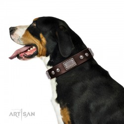 "Brown Leather Dog Collar with Chrome Plated Skulls & Plates - Audacious and Edgy"" Decor by Artisan"""