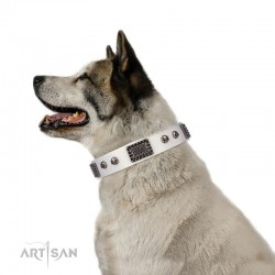 "White Leather Dog Collar with Chrome Plated Skulls & Plates - Audacious and Edgy"" Decor by Artisan"""
