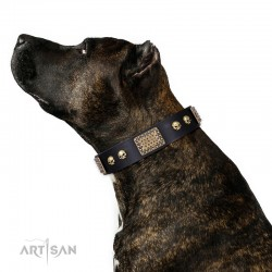 "Handmade Black Leather Dog Collar - Plates'n'Skulls"" Decor by Artisan"""