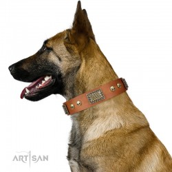 "Handmade Tan Leather Dog Collar - Plates'n'Skulls"" Decor by Artisan"""