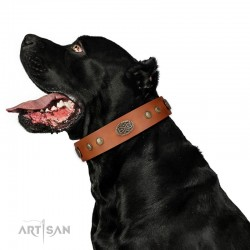 "Royal Tan Leather Dog Collar - Retro Flora"" Decor by Artisan"""