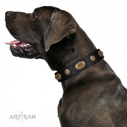 "Black Leather Dog Collar with Brass Plated Decor - ""Retro Temptation"" Handcrafted by Artisan"