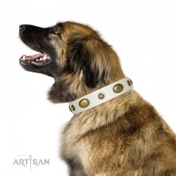"White Leather Dog Collar with Brass Plated Decor - ""Retro Temptation"" Handcrafted by Artisan"
