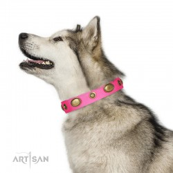 "Pink Leather Dog Collar with Brass Plated Decor - Retro Temptation"" Handcrafted by Artisan"""