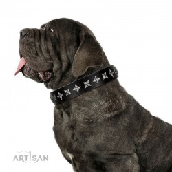 "Fabulous Black Leather Dog Collar  - ""Starry Beauty"" Chrome Plated Decor by Artisan"