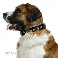 "Fabulous Brown Leather Dog Collar  - ""Starry Beauty"" Chrome Plated Decor by Artisan"