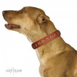 "Fabulous Tan Leather Dog Collar  - ""Starry Beauty"" Chrome Plated Decor by Artisan"
