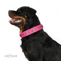 "Fabulous Pink Leather Dog Collar  - ""Starry Beauty"" Chrome Plated Decor by Artisan"