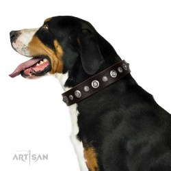 "Handmade Brown Leather Dog Collar - ""Gorgeous Roundie"" Decor by Artisan (C326)"