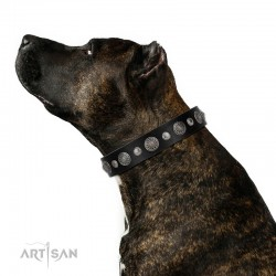 "Decorated Black Leather Dog Collar - Vintage Elegance"" Chrome Plated Decor by Artisan"""