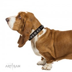 "Decorated Brown Leather Dog Collar - Vintage Elegance"" Chrome Plated Decor by Artisan"""
