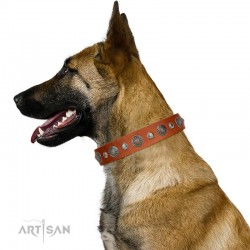 "Decorated Tan Leather Dog Collar - Vintage Elegance"" Chrome Plated Decor by Artisan"""