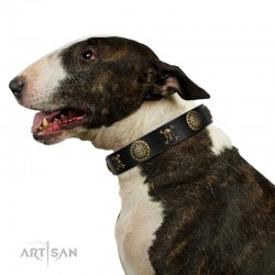 "Decorated Black Leather Dog Collar - Hip&Edgy"" Brass Decor by Artisan"""
