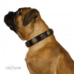 "Decorated Brown Leather Dog Collar - Hip&Edgy"" Brass Decor by Artisan"""