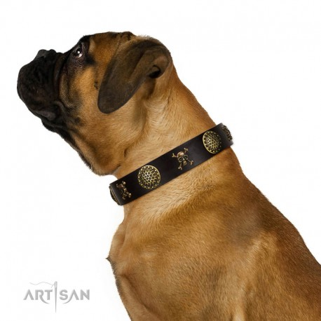 "Decorated Brown Leather Dog Collar - ""Hip&Edgy"" Brass Decor by Artisan"