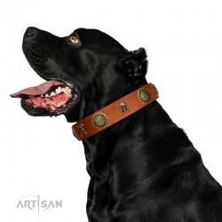 "Decorated Tan Leather Dog Collar - Hip&Edgy"" Brass Decor by Artisan"""
