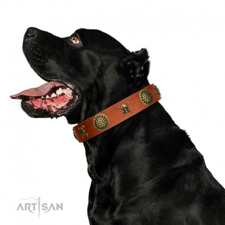 """Decorated Tan Leather Dog Collar - """"Hip&Edgy"""" Brass Decor by Artisan"""