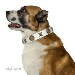 "Decorated  White Leather Dog Collar - ""Hip&Edgy"" Brass Decor by Artisan"