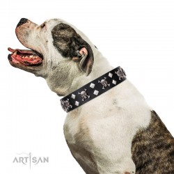 "Leather Dog Collar with Chrome-plated Decor - Buccaneer Style"" Handcrafted by Artisan"""