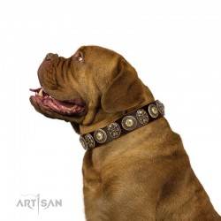"""Caribbean Treasures"" FDT Artisan Brown Leather Dog Collar With Old-Bronze-Like Conchos And Medallions With Skulls"