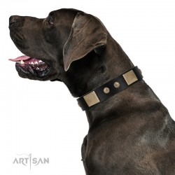 """Antique Gloss"" FDT Artisan Black Leather Dog Collar with Bronze-like Plates and Small Studs"