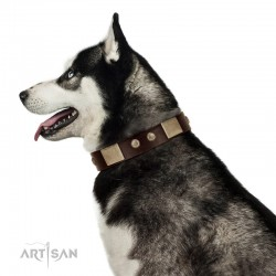 """Middle Age"" FDT Artisan Brown Leather Dog Collar with Old Bronze-Plated Engraved Flowers and Large Plates"