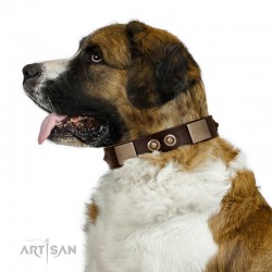 """Sense of Freedom"" FDT Artisan Brown Leather Dog Collar with Old Bronze-Plated Studs and Plates"