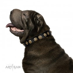 """""""Golden Artifact"""" FDT Artisan Black Leather Dog Collar with Old-bronze Covered Medallions"""