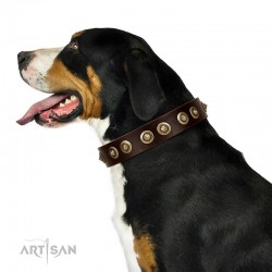 """""""Woofy Art"""" FDT Artisan Brown Leather Dog Collar Adorned with Old Bronze-like Studs"""