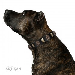 """Sea Romance"" FDT Artisan Black Leather Dog Collar with Plates and Skulls"