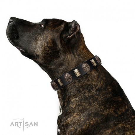 """""""Skull's Adventure"""" FDT Artisan Brown Leather Dog Collar with Plates and Ovals"""