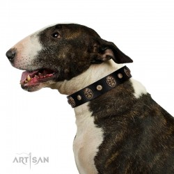 """Wild Spirit"" FDT Artisan Black Leather Dog Collar with Gold-like Studs and Medallions with Skulls"
