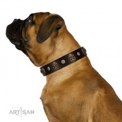 """Snazzy Paws"" FDT Artisan Brown Leather Dog Collar Adorned with Conchos and Medallions"