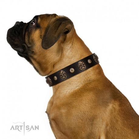 """""""Snazzy Paws"""" FDT Artisan Brown Leather Dog Collar Adorned with Conchos and Medallions"""
