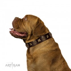 """Captain Hook"" FDT Artisan Brown Leather Dog Collar with Stars and Skulls"