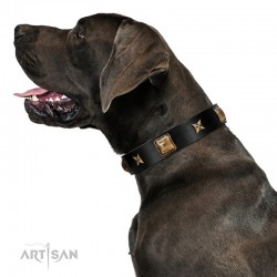 """Starry Harmony"" FDT Artisan Black Leather Dog Collar with Squares and Stars for Comfortable Walking"