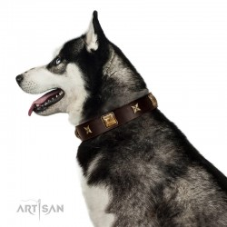 """Choco Dreams"" FDT Artisan Brown Leather Dog Collar with Squares and Stars"