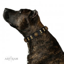 """""""Lion's Pride"""" FDT Artisan Black Leather Dog Collar with Ornate Conchos and Small Plates"""