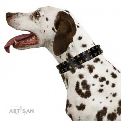 """Refined Pattern"" FDT Artisan Black Leather Dog Collar with Two Rows of Stunning Decorations"
