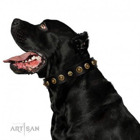 """""""Reckless Mutt"""" FDT Artisan Black Leather Collar with Skulls and Brooches"""