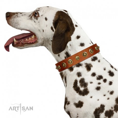 """""""Prez of the Pack"""" FDT Artisan Tan Leather Dog Collar with Skulls and Brooches"""