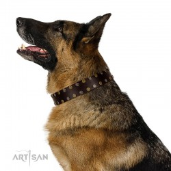 """To the Moon and Back"" FDT Artisan Brown Leather Dog Collar with Bronze-like Star Studs"