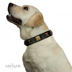 """Welcome on Board"" FDT Artisan Black Leather Dog Collar with Skulls and Crossbones Combined with Squares"