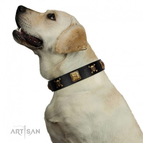 """""""Welcome on Board"""" FDT Artisan Black Leather Dog Collar with Skulls and Crossbones Combined with Squares"""