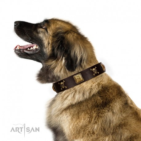 """Crazy Pirate"" FDT Artisan Brown Leather Dog Collar with Old Bronze-Plated Skulls and Plates"