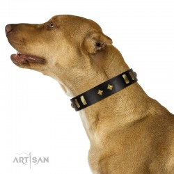 """De Luxe"" FDT Artisan Black Leather Dog Collar with Old Bronze-like Plates and Studs"