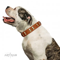 """Olive Slice"" FDT Artisan Tan Leather Dog Collar with Engraved and Smooth Plates"